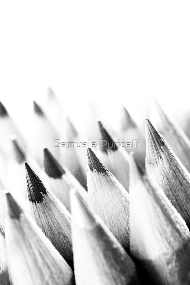 Discolored pencils revisited by Samuele Puricelli
