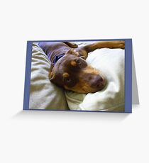 LUXURIATING...on mommie's cream couch! Greeting Card