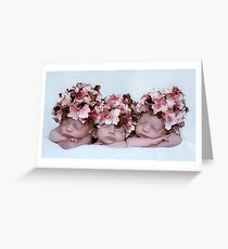 2 indentical~1 fraternal Greeting Card