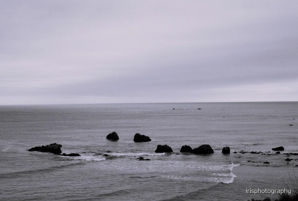 rugged coast of northern california by irisphotography