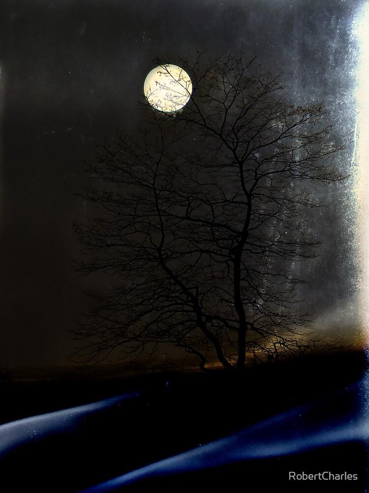 Luce di Luna by RobertCharles