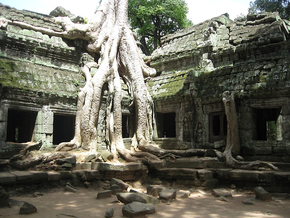 Rooted in antiquity - Ta Prohm by Deirdreb