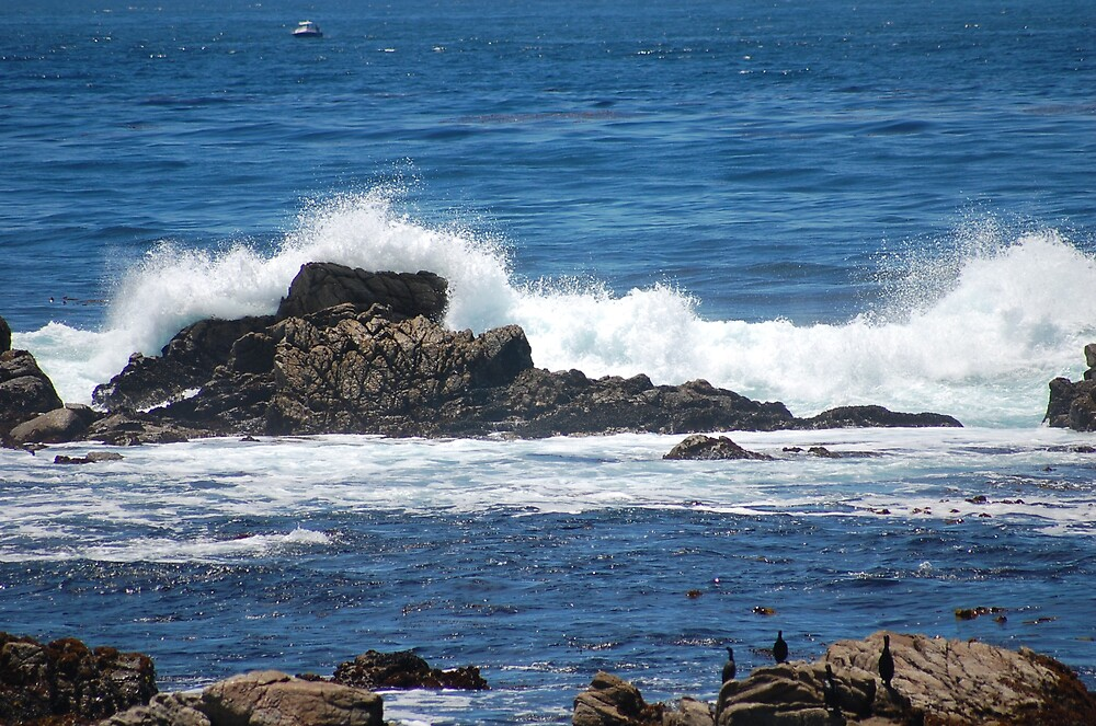 Crashing Waves by kayf