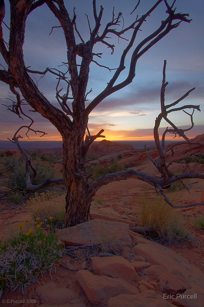 Canyonlands Sunset by Eric Purcell