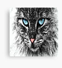 Blue Eyes Cat by FreddiJr Canvas Print