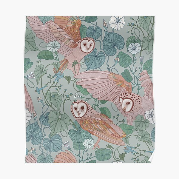 Pink barn owls Poster