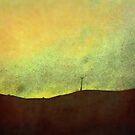 Skyline 1 by Lynne Haselden