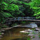 Park Bridge HDR by PJS15204