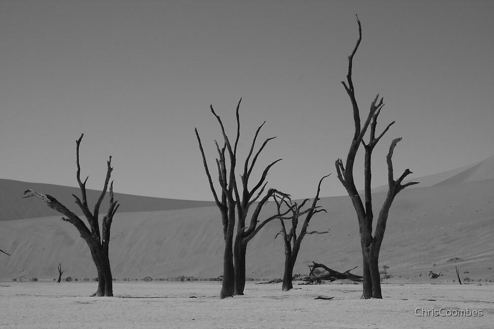 Dead vlei by ChrisCoombes