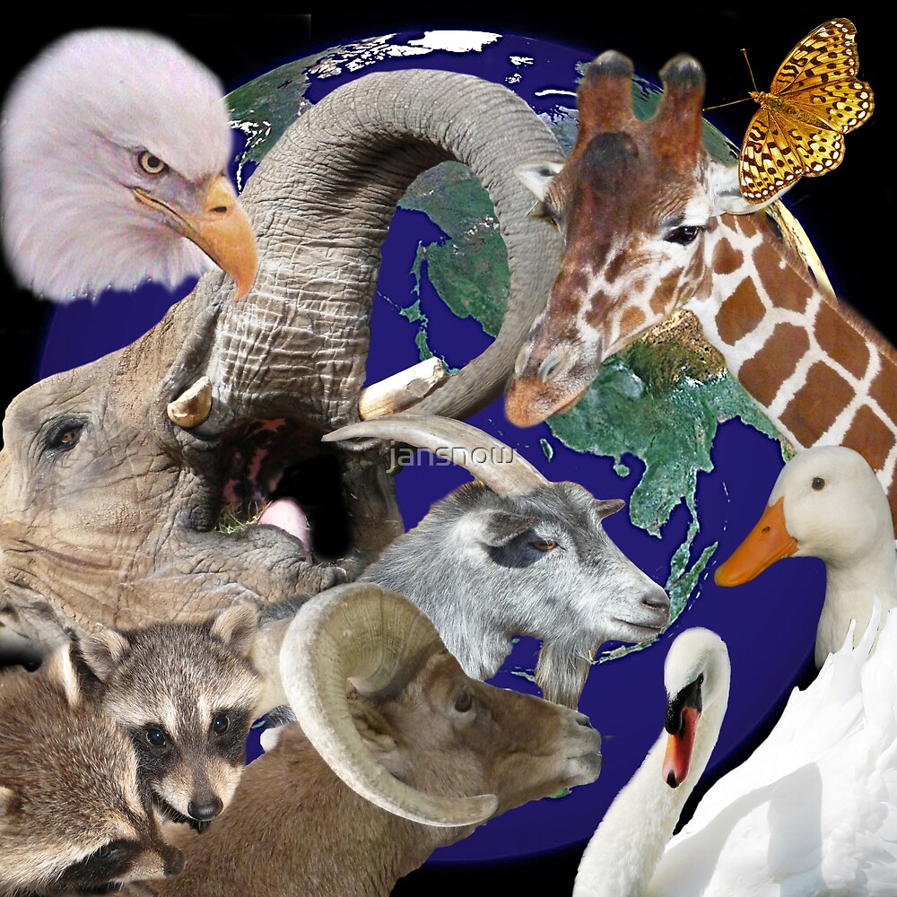 All God's Creatures © by jansnow