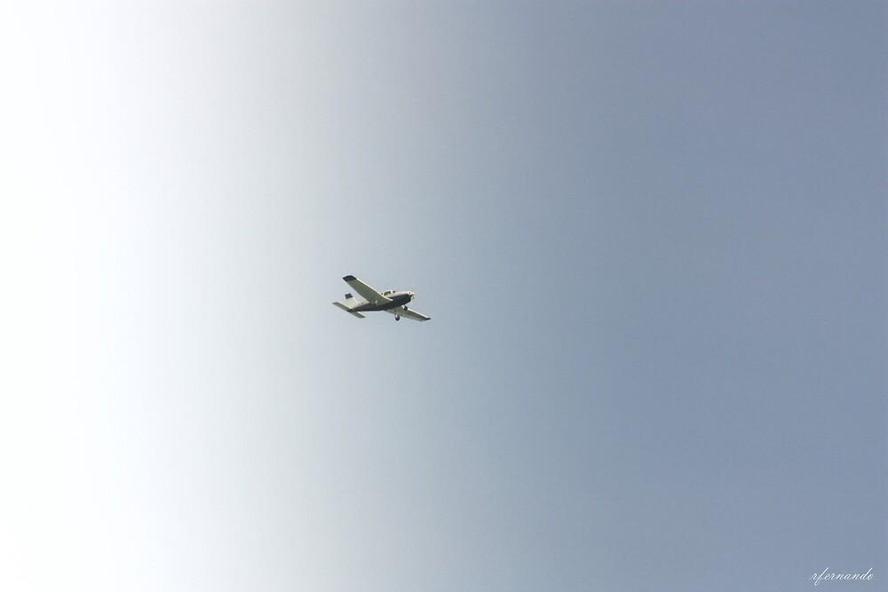Freedom in the sky by Rukshan Fernando