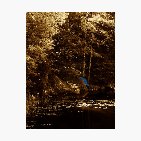 The Summer Obsession Photographic Print