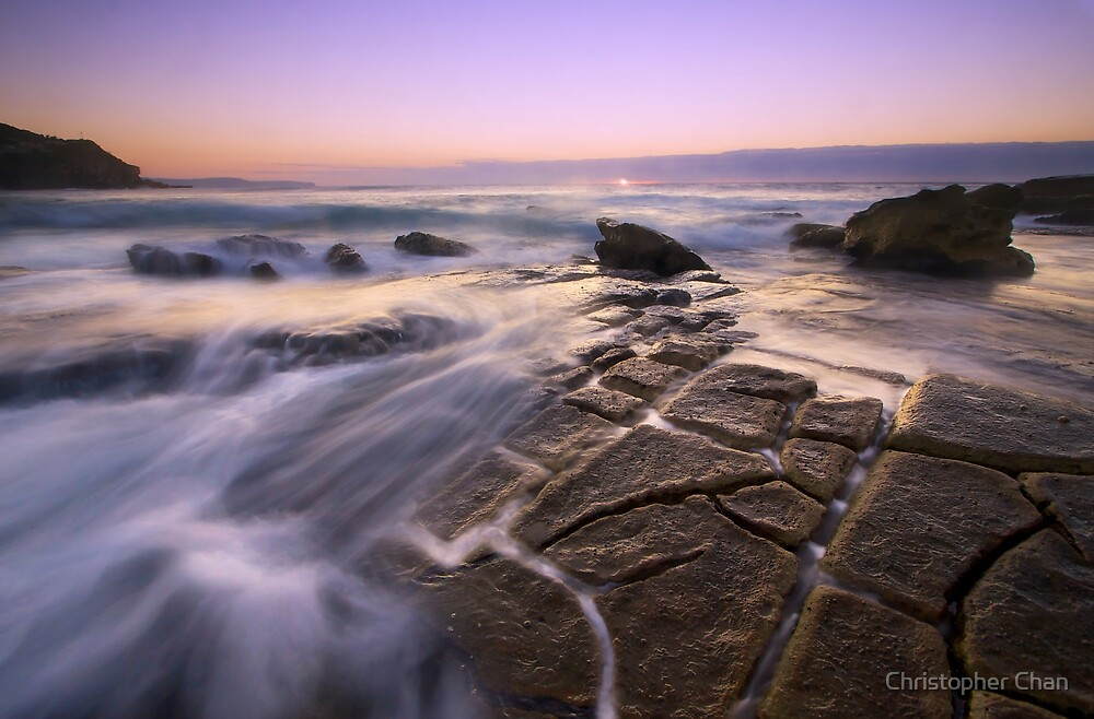 Whale Beach by Christopher Chan