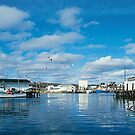It's A Boat Harbor by Epeaches