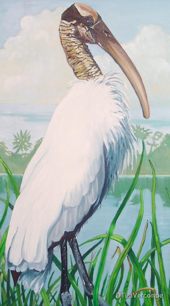 Wood Stork by DTLaVercombe