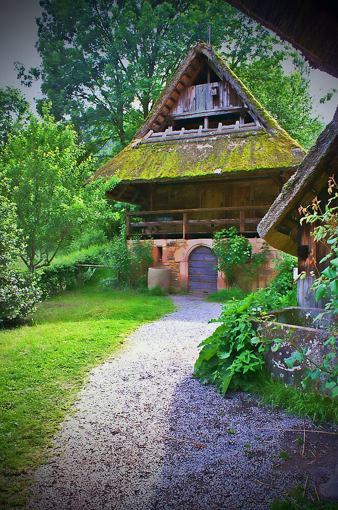 Old cottage in a forest by tanyaemsh