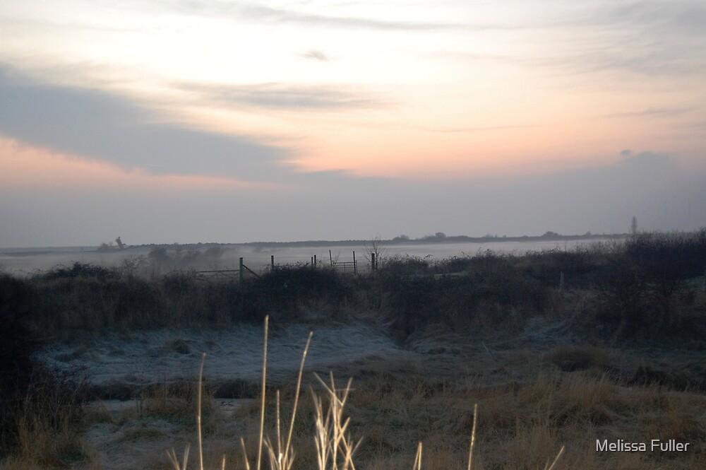 Settling Mist by Melissa Fuller