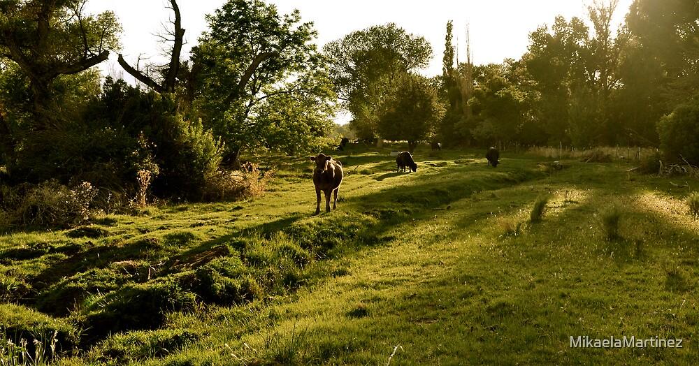 Green Pastures by MikaelaMartinez