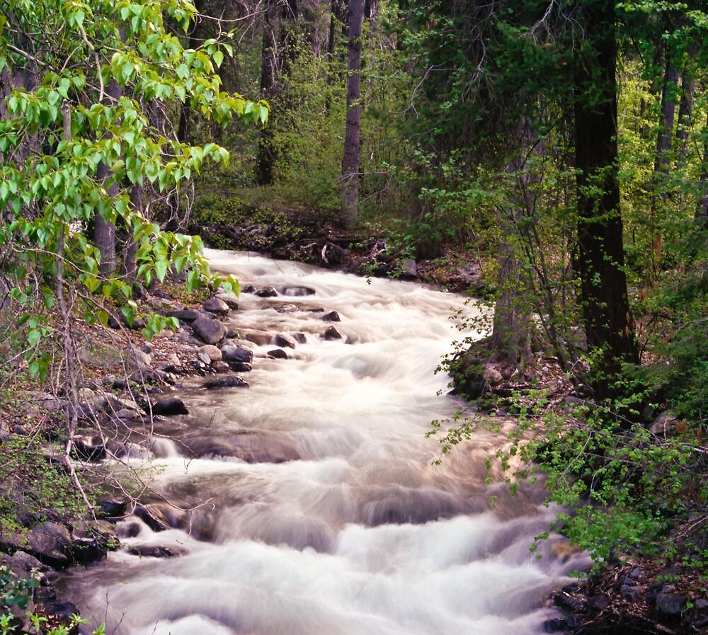 Wenas Creek Springtime by Rod Crow