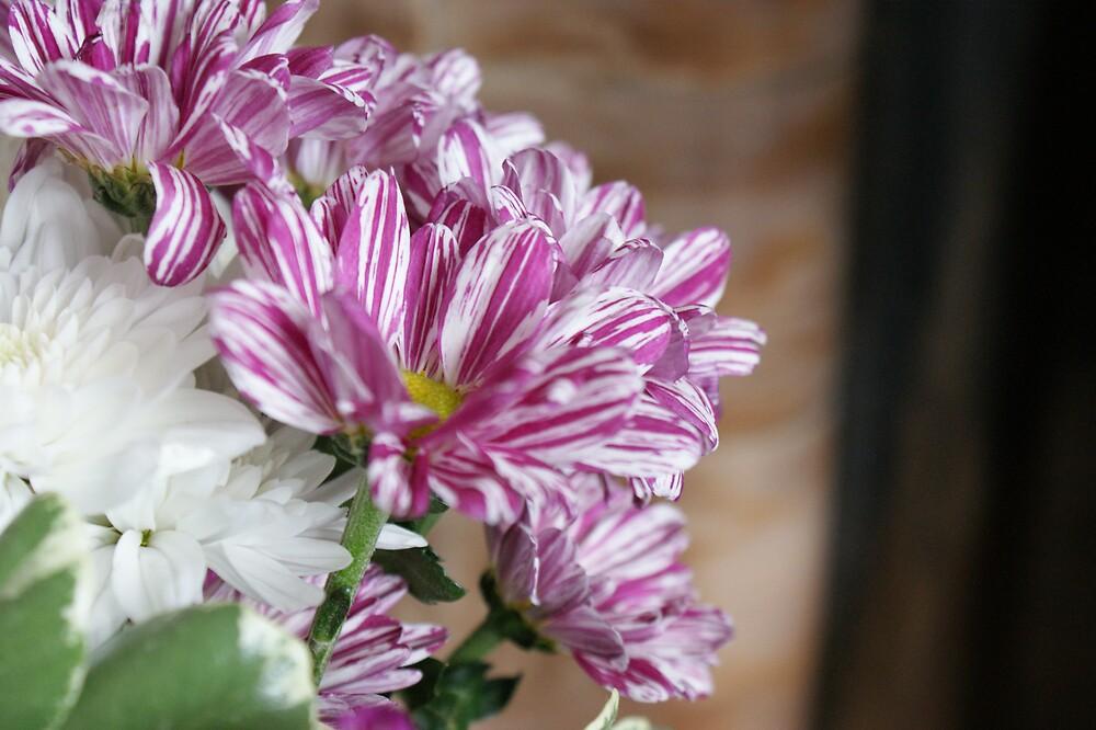 Purple Flowers by ashley Jones