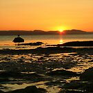 Portmahomack Sunset by Steven McEwan