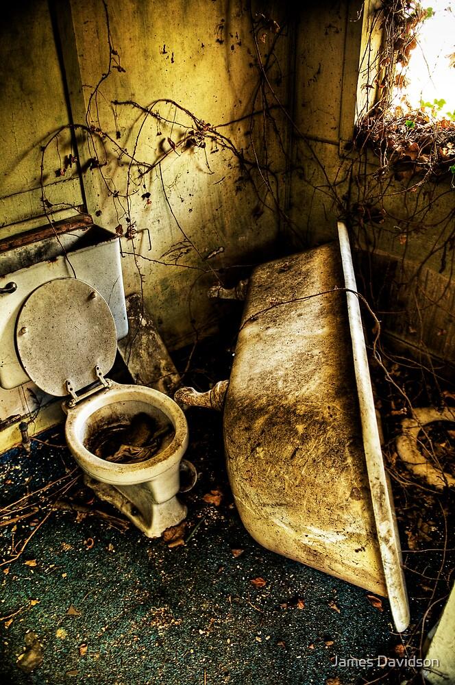 Tub & Toilet by James Davidson