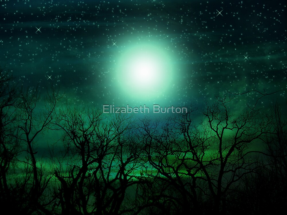 By The Light Of The Moon by Elizabeth Burton