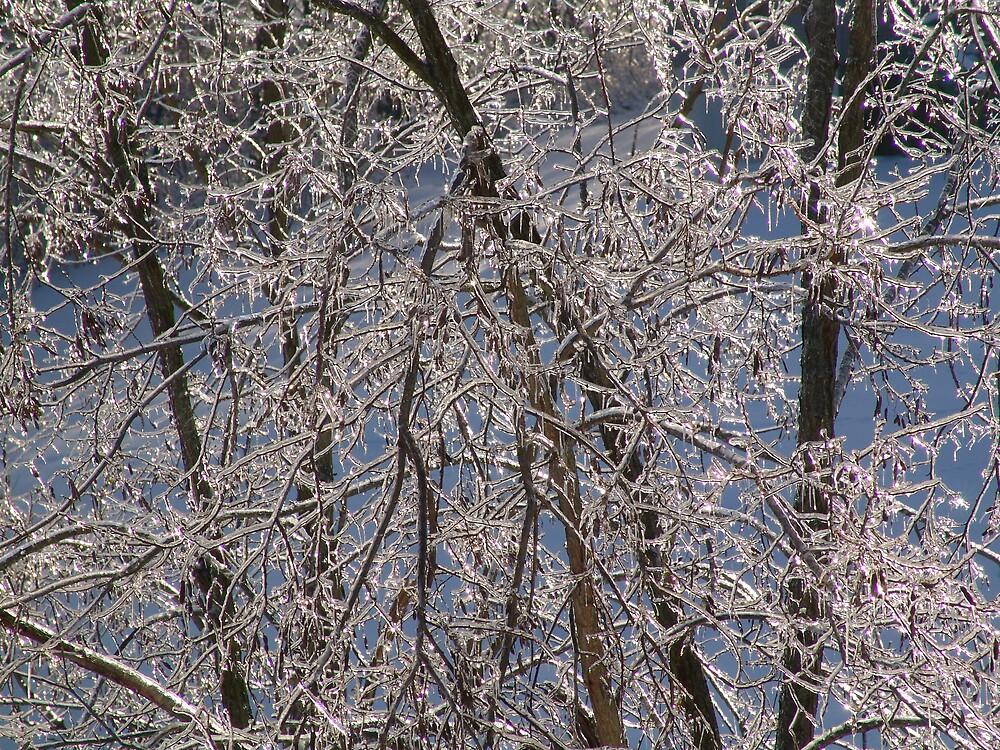 Frozen in Time by MRuss