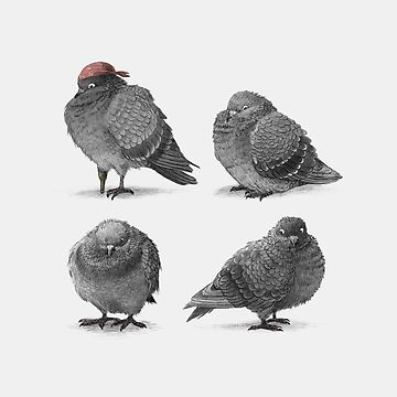 Four Pigeons by opifan