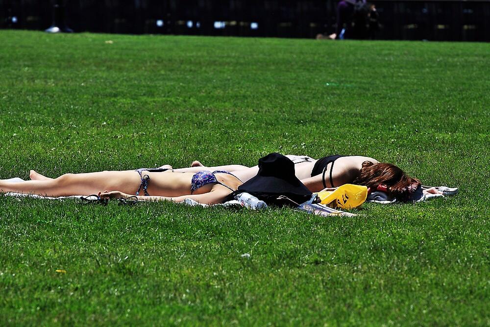 Splendour in the Grass  by pmarella