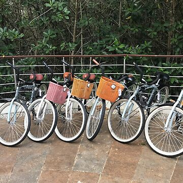 Bicycles at the Hotel by ephotocard
