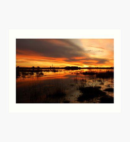 Golden Pond  Art Print