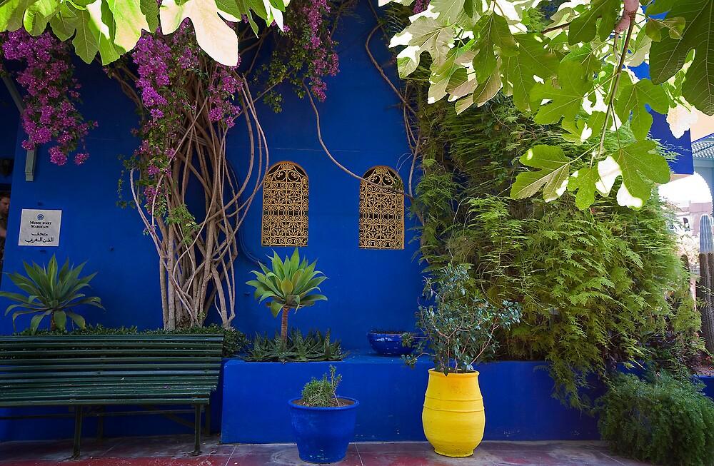 Majorelle Gardens, Marrakech. by Frank Alvaro