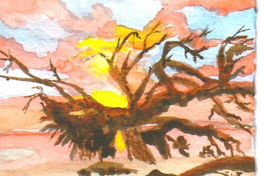 Driftwood on Jekyll Island, Ga.  by Warren  Thompson