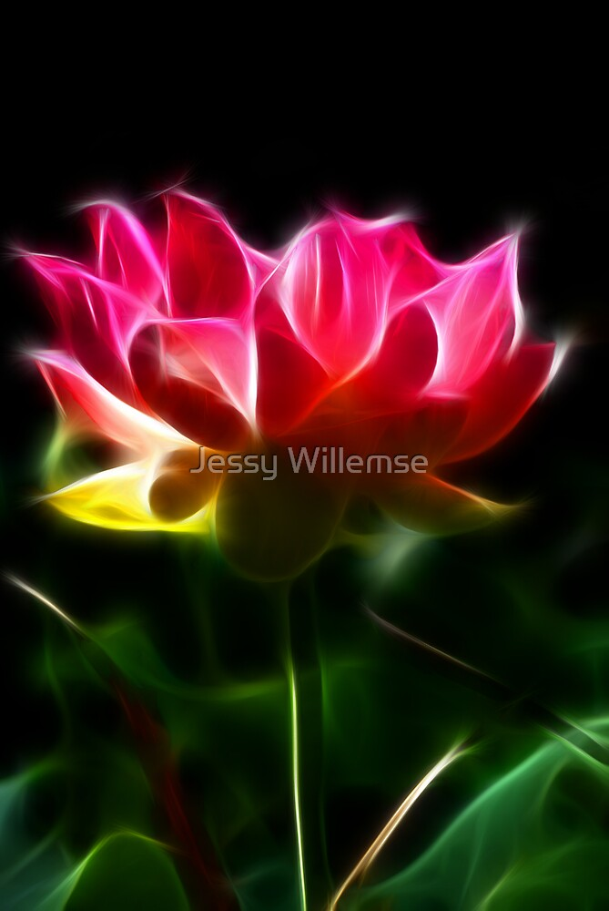 Beauty Queen by Jessy Willemse