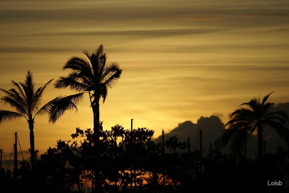 Oahu Sunset by Loisb