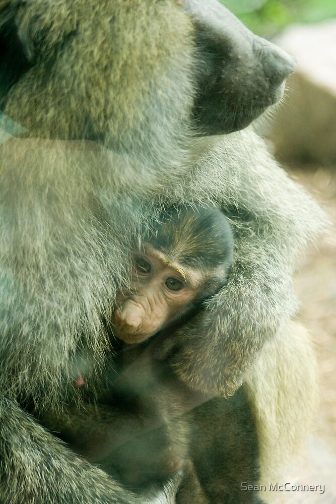 Just mommy and me by Sean McConnery