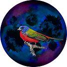 Planet bird by ElliePDesigns