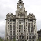 Royal Liver building. Liverpool. by ccrcats