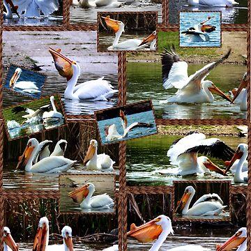 It's a Pelican World by NicoleK-design