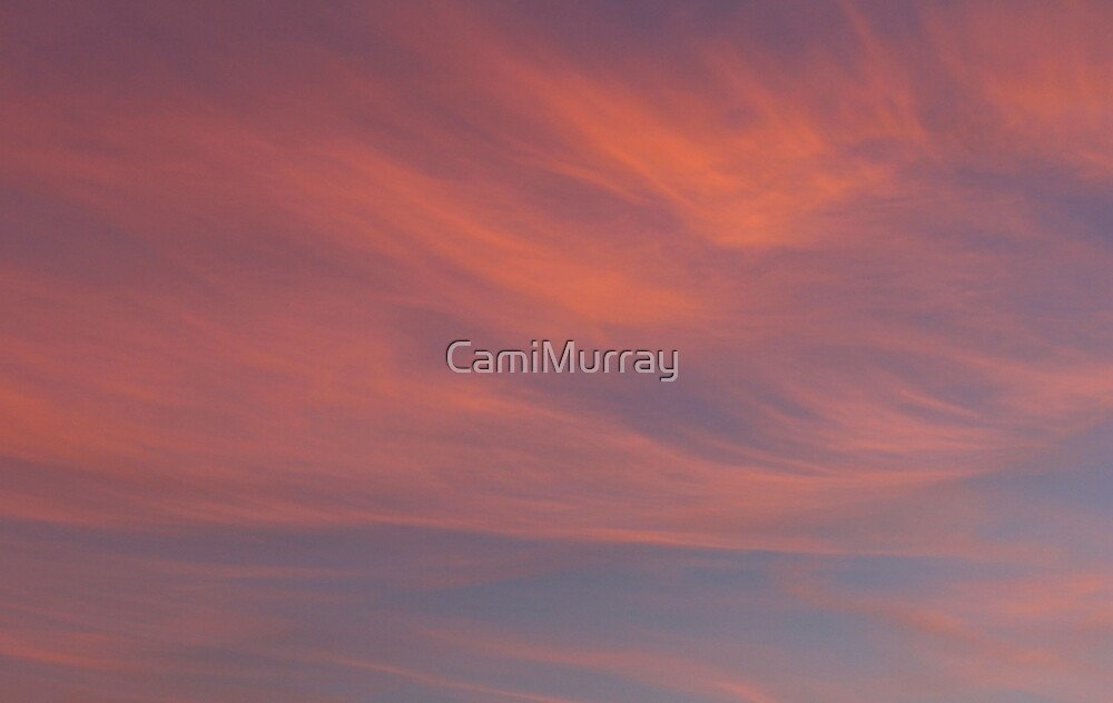 Candy Floss Skies 2 by Camille Murray