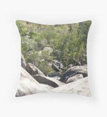 Granite Gorge Throw Pillow