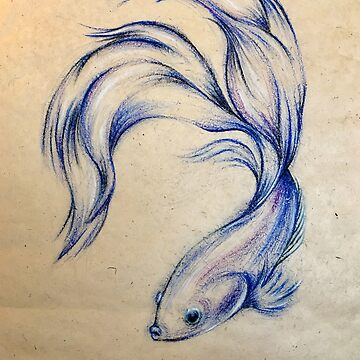 Blue Angel - Siamese Fighting Fish Oil pastel on Paper Drawing by tranquilwaters
