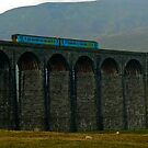 High on Ribblehead Viaduct by Trevor Kersley
