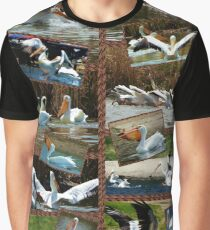 World of Pelicans Graphic T-Shirt