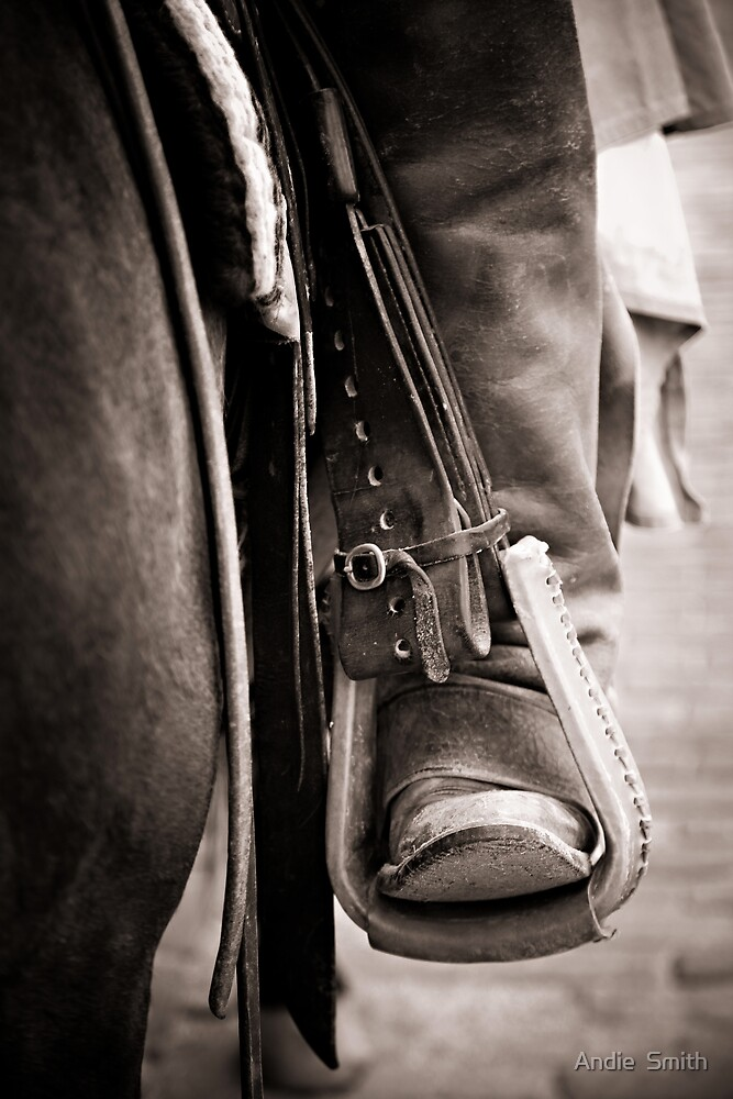 Boots by Andie  Smith