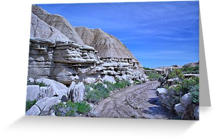 Toadstool Geological Park 2 by Duane Sr