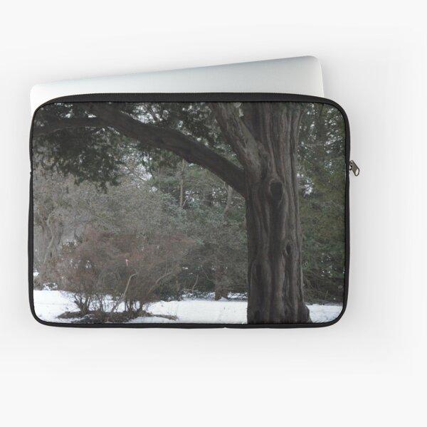 Wintery walk through the park Laptop Sleeve