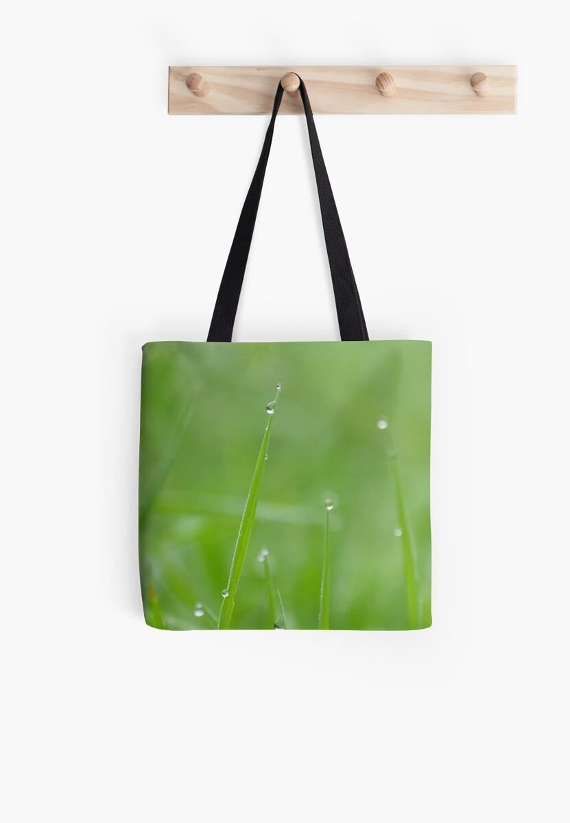 Misty Green by Tracy Wazny