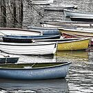 All Tied Up  ---Lyme, Dorset by lynn carter